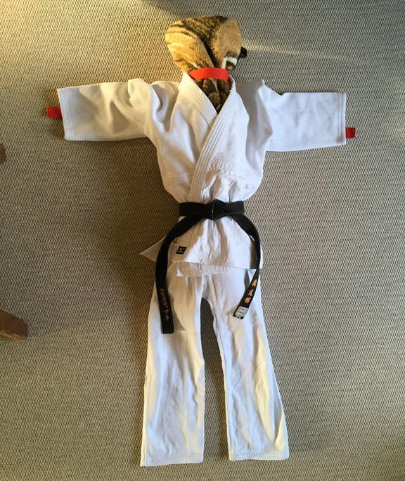 BJF voll kontaktlos: Corona-Woodoo-Judo-Puppe Tomo Dachi; Anleitung 4 - fertig